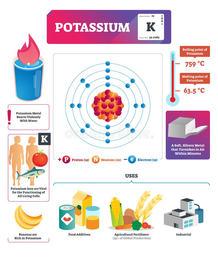 Potassium vector illustration. Chemical element characteristics and uses. royalty free illustration