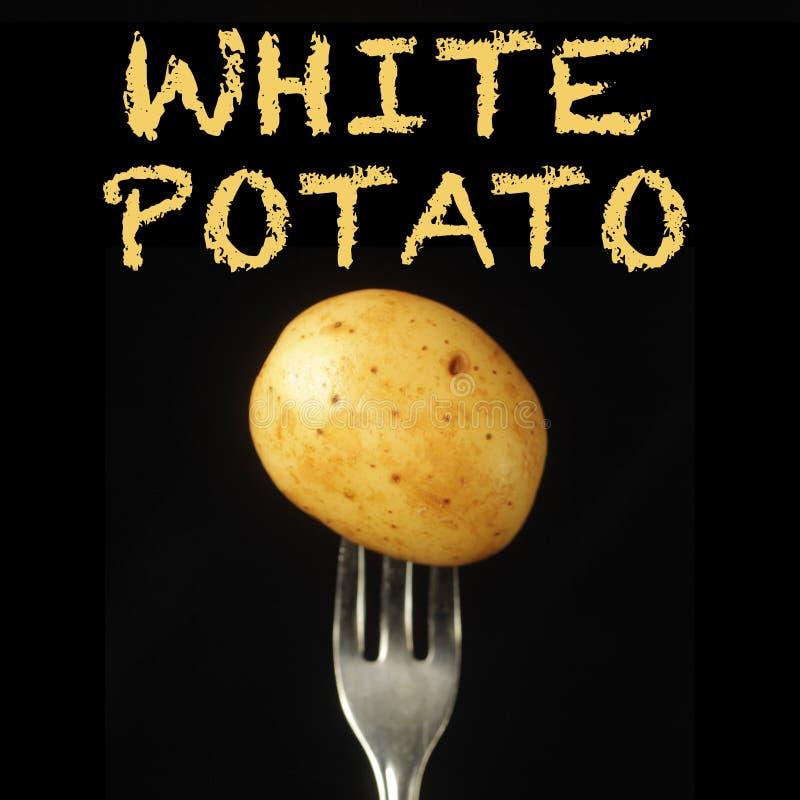 Potatis på gaffel royaltyfri bild
