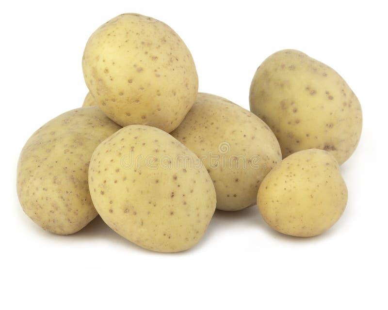 Potatisar arkivfoto