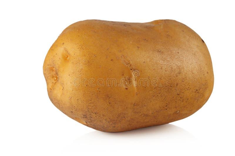 Potatisar. royaltyfria foton