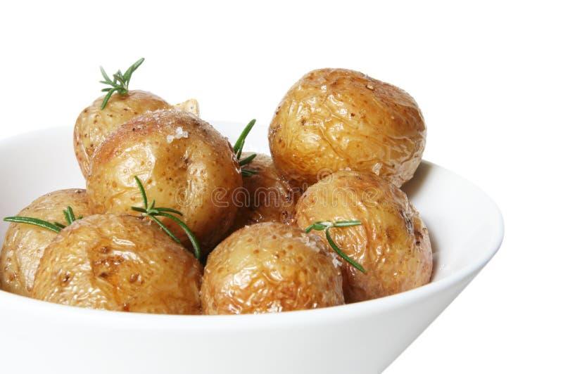potatisar grillat salt arkivbild