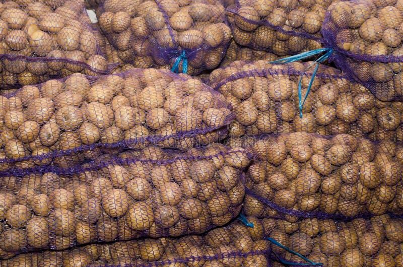 Potatisar i påsar, grönsaker, jordbruk, agro-bransch royaltyfri bild