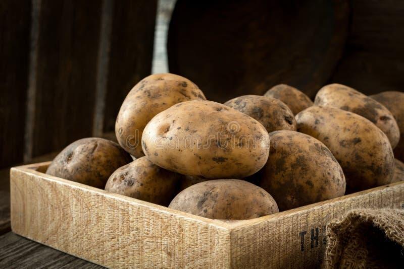 Potatisar i träask royaltyfri foto