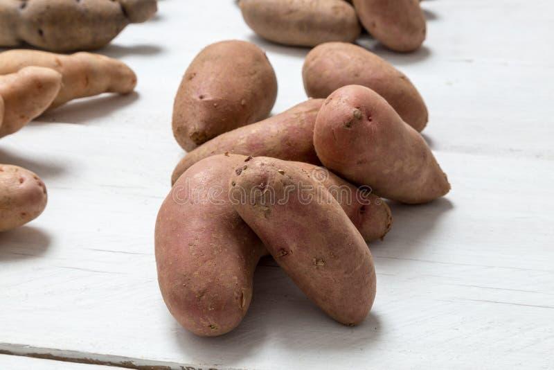 Potatisar på det vita träbrädebegreppet royaltyfri fotografi