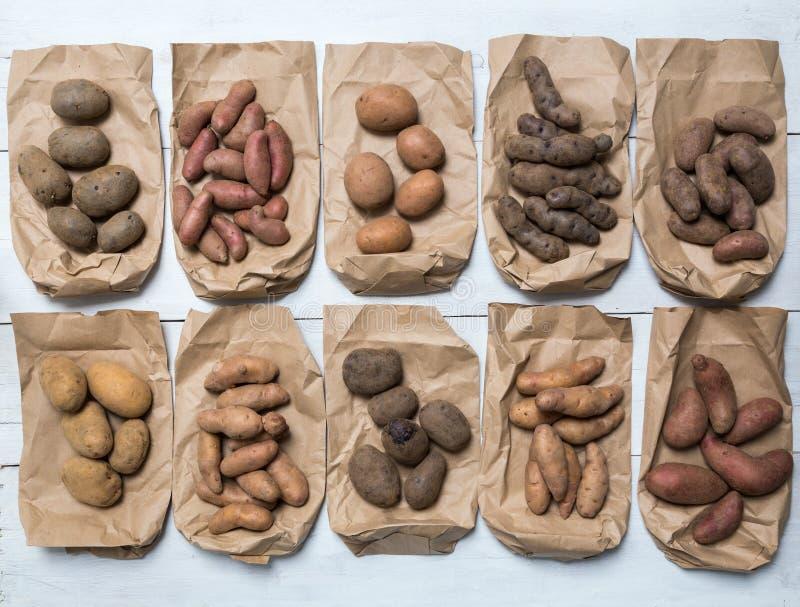 Potatisar på ett vitt träbrädebegrepp royaltyfri foto