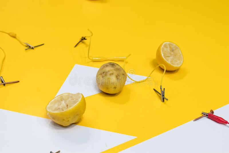 Potato battery STEM activity with potatoes, lemons, alligator cl. Ips, zinc and copper nails. Natural battery to turn on a led. scientific experiment for royalty free stock photography
