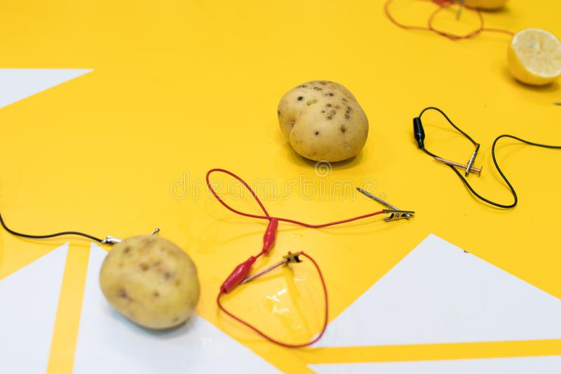 Potato battery STEM activity with potatoes, lemons, alligator cl. Ips, zinc and copper nails. Natural battery to turn on a led. scientific experiment for stock images