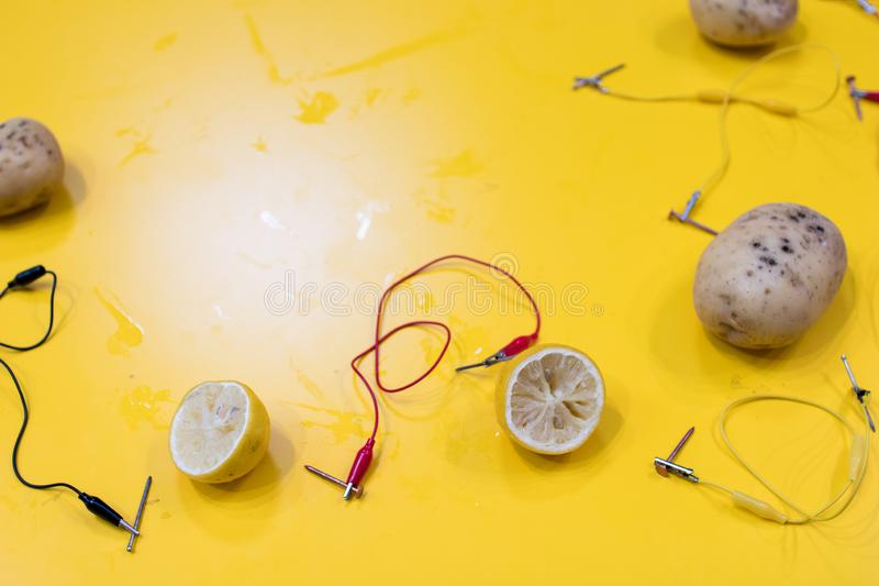 Potato battery STEM activity with potatoes, lemons, alligator cl. Ips, zinc and copper nails. Natural battery to turn on a led. scientific experiment for royalty free stock photos