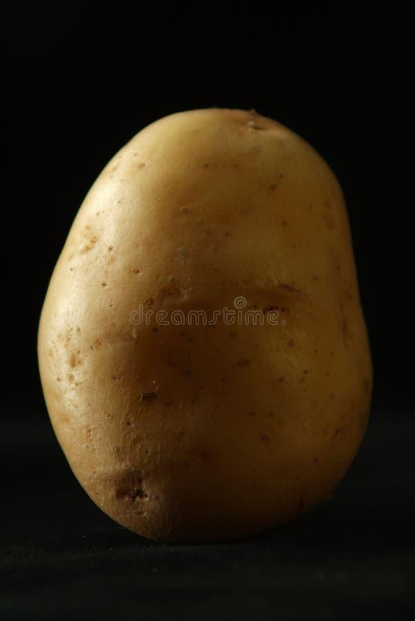 Potato on black royalty free stock images