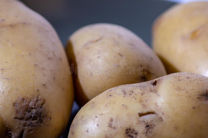 The potato is an edible tuber obtained from the plants of the species Solanum tuberosum, widely used for food purposes after cook. Ing stock photography