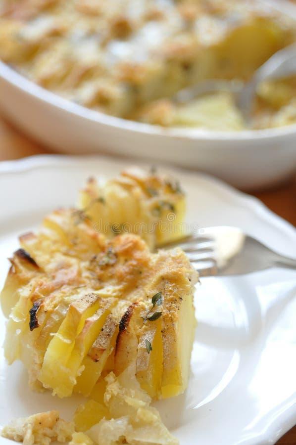 Potato gratin. In a baking dish royalty free stock images