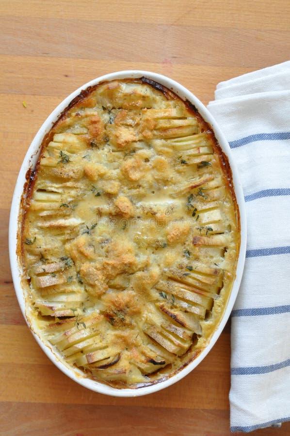 Potato gratin royalty free stock photo