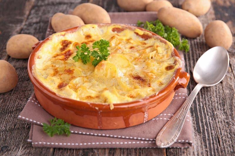 Potato gratin stock photos
