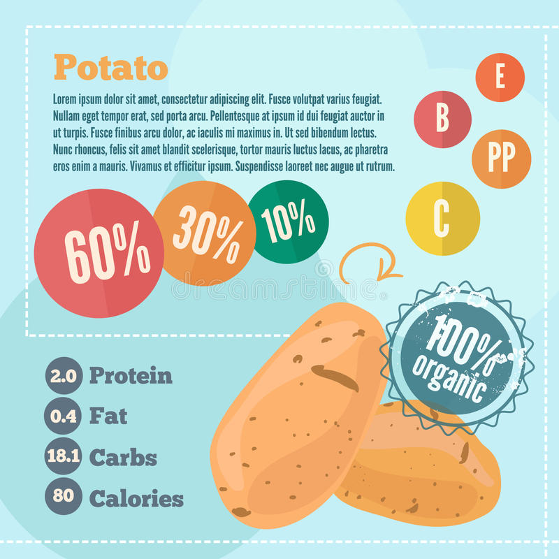 Potato infographics and vitamins in a flat style. Vector illustration. EPS 10 royalty free illustration