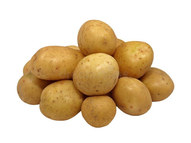 Potato.Isolated. lizenzfreies stockbild