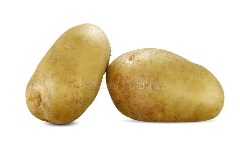 potato odosobnione white zdjęcie stock
