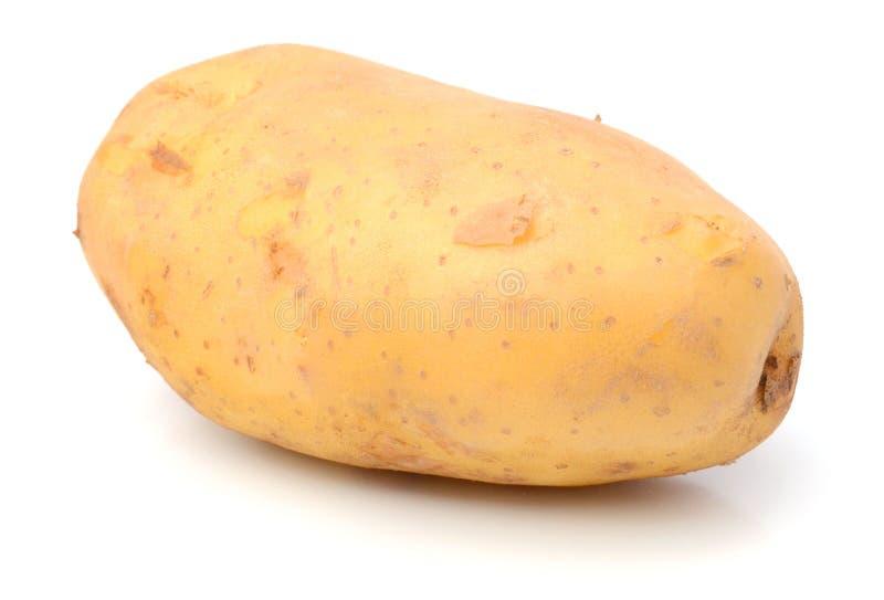 Potato. Raw Potato and Sliced Potato. Sweet, eating royalty free stock photo