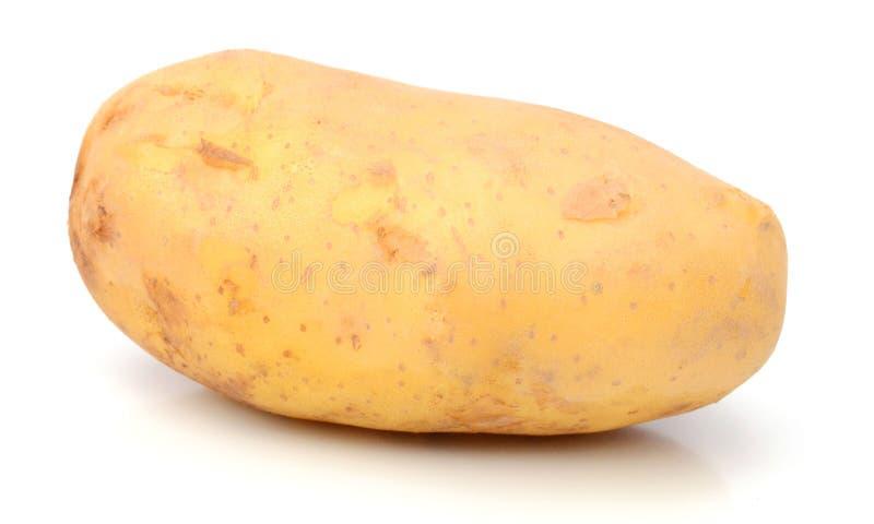 Potato. Raw Potato and Sliced Potato. Sweet, eating stock photography
