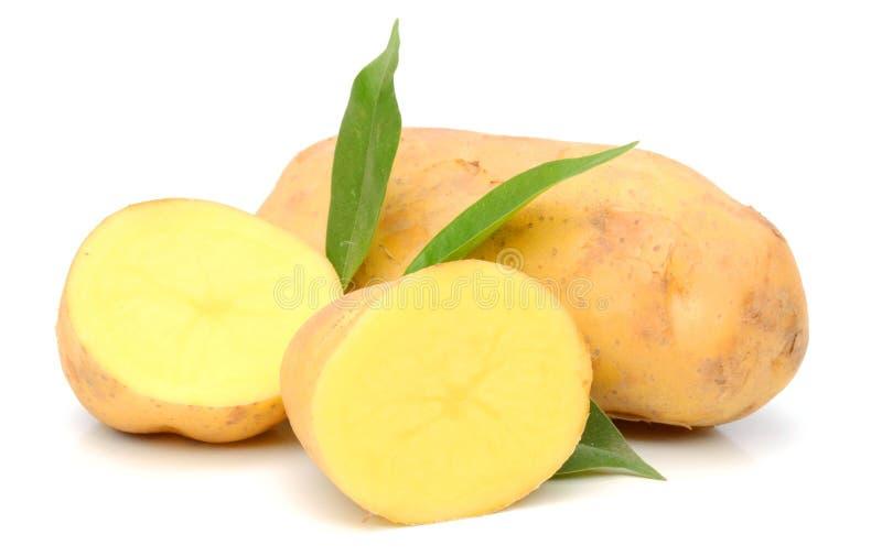 Potato. Raw Potato and Sliced Potato. Sweet, eating royalty free stock images