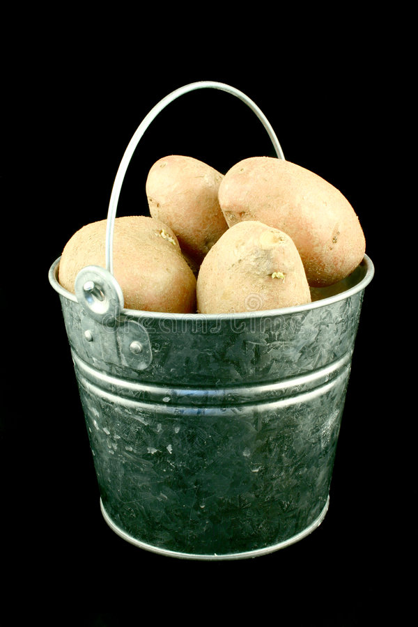 Potato's bucket royalty free stock photos