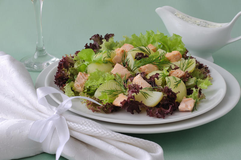Download Potato salad with salmon stock image. Image of food, buffet - 26353317