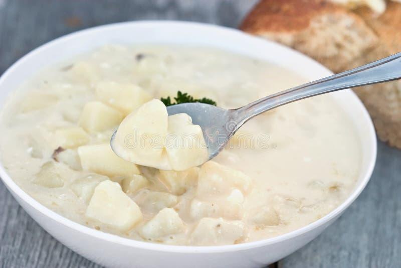 Potato Soup royalty free stock images
