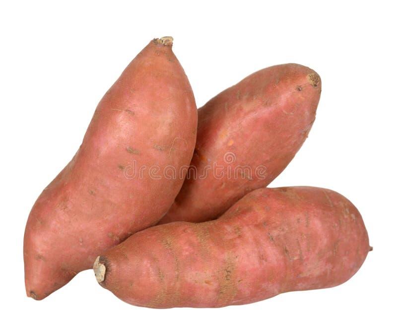 potatoe γλυκό στοκ εικόνες
