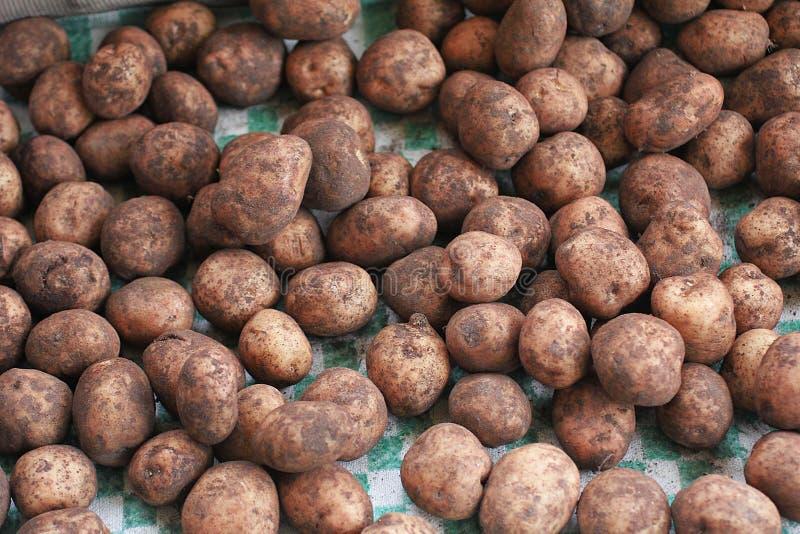 Potatoe, batata, fundo sujo da batata Batatas no mercado foto de stock royalty free