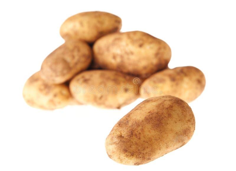 Download Potatoes stock photo. Image of half, kartofle, market - 13727674