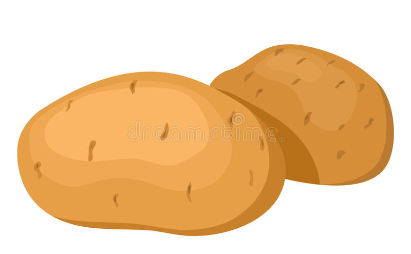 The Potatoes. Royalty Free Stock Image