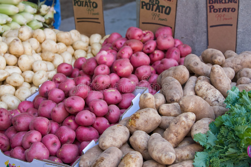Potatoes. Variety of red, baking and Idaho potatoes in a fresh farmers market