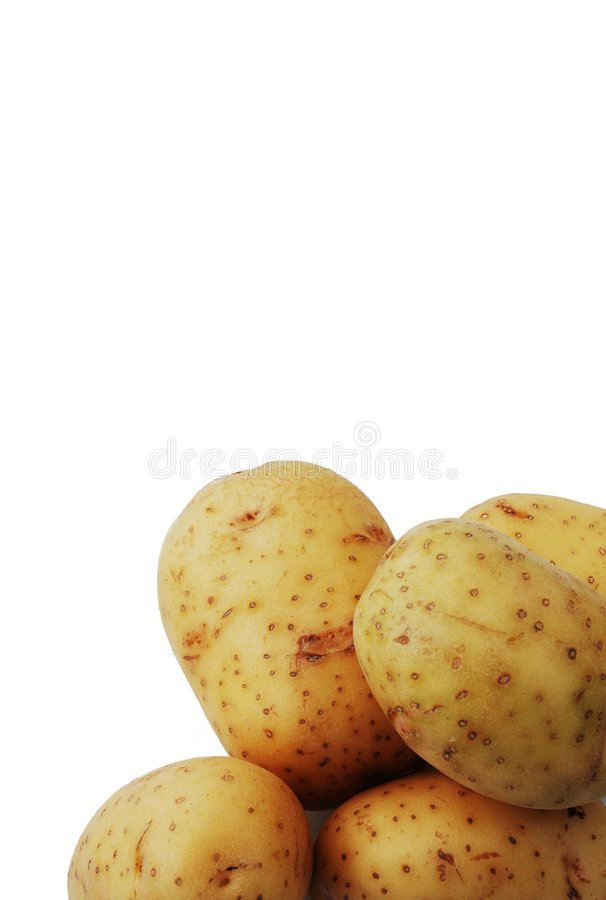 Free Potatoes Stock Photo - 547520