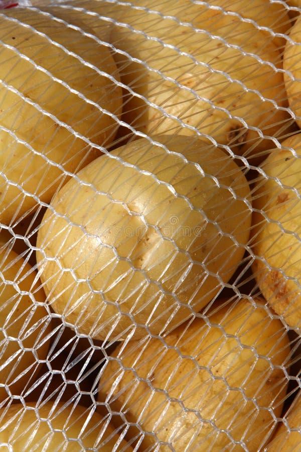 Free Potatoes Royalty Free Stock Photography - 7970637