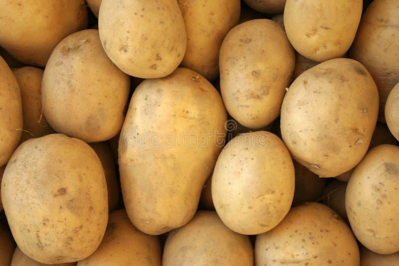Potatoes At Bazaar Stock Image