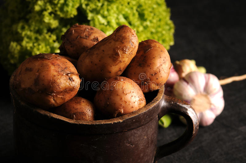 Potatoes in a clay pot. Fresh, young potatoes in a clay pot stock photos