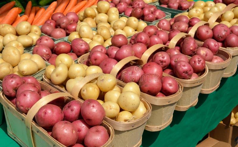 Potatoes at Farmers Market stock image