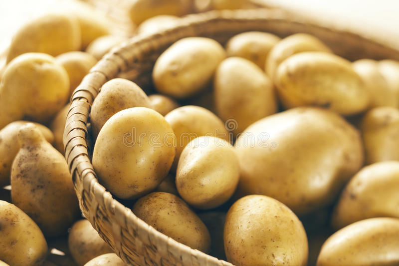 Potatoes. Fresh potatoes on wooden basket