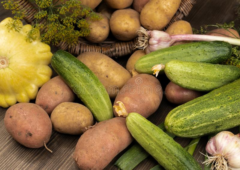 Fresh vegetables near an inverted wicker basket with potatoes. Potatoes, squash, fresh cucumbers, garlic near the overturned wicker basket with potatoes on a royalty free stock image