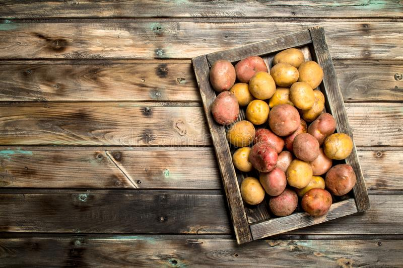 Potatoes on a wooden tray. On wooden background royalty free stock photography