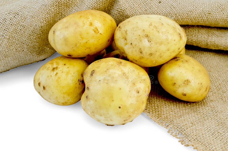 Potatoes yellow with bagging royalty free stock photos