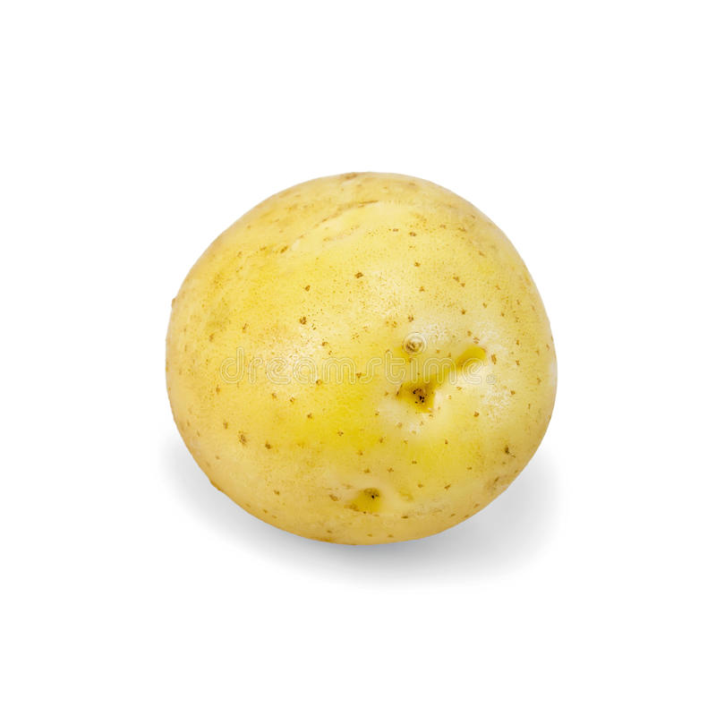Potatoes yellow one royalty free stock images