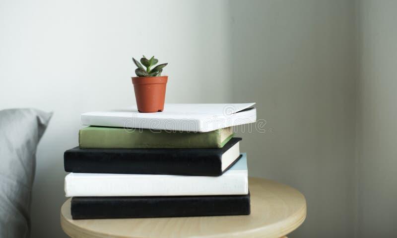 Pote de la planta en pocos libros imagen de archivo libre de regalías