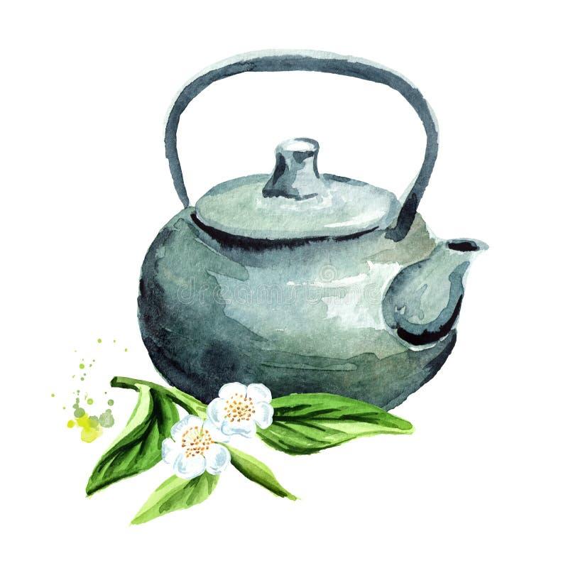 Pote del té con las hojas de té verdes Ejemplo dibujado mano de la acuarela, aislado en el fondo blanco ilustración del vector