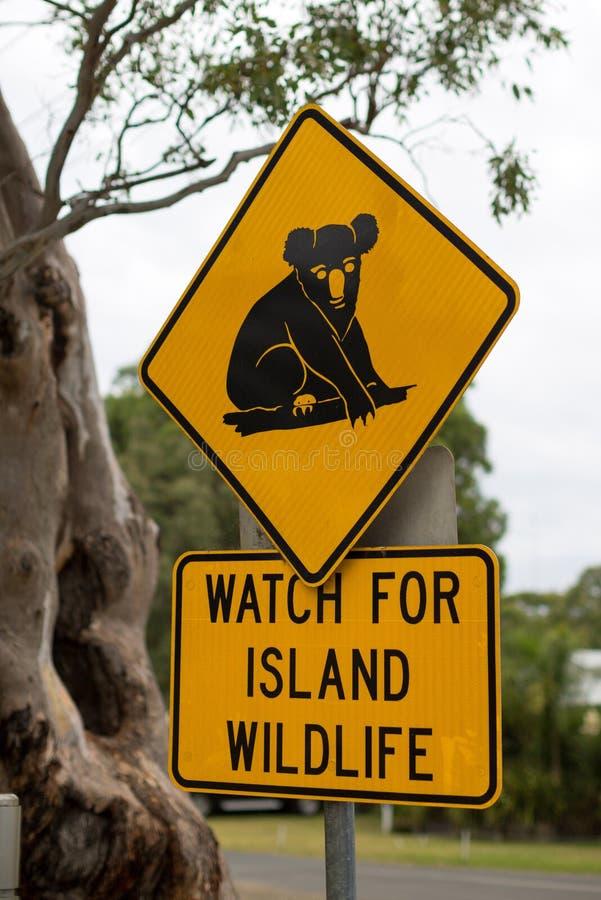 Poteau de signalisation montrant un koala, Australie photo libre de droits