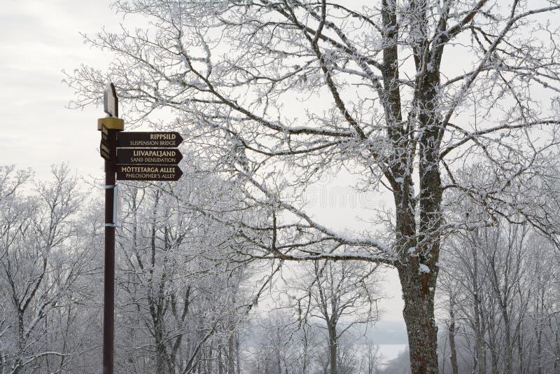 Poteau indicateur dans les ruines du château d'ordre de Viljandi photo stock