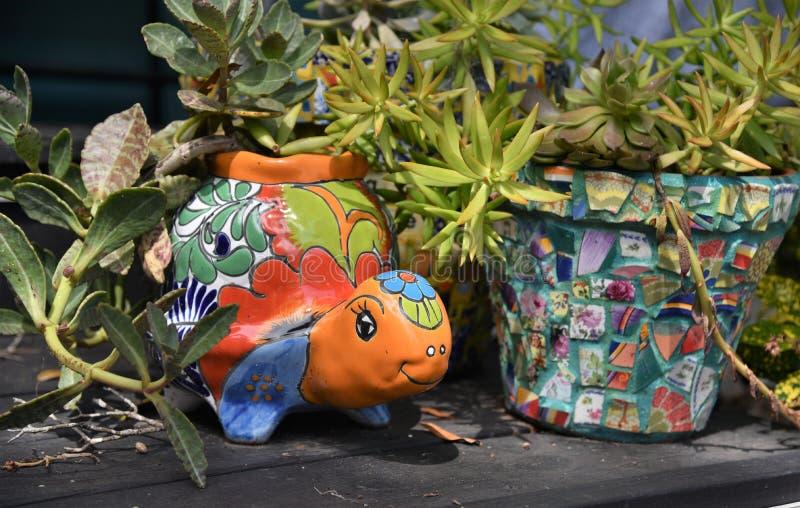 Potenciômetro dado forma da flor tartaruga colorida decorativa bonito foto de stock royalty free