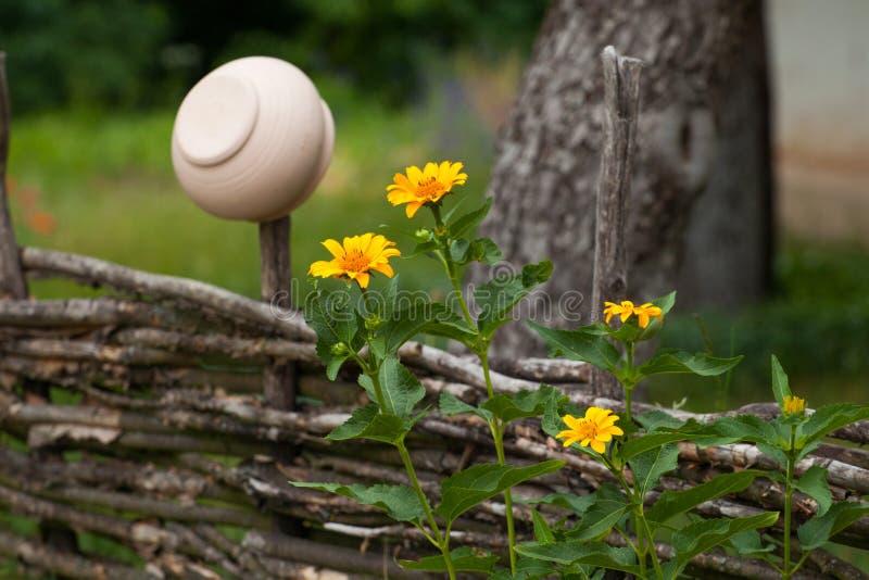 Potenciômetro de argila cerâmico vantajoso que pendura na cerca do salgueiro cercada por y imagens de stock