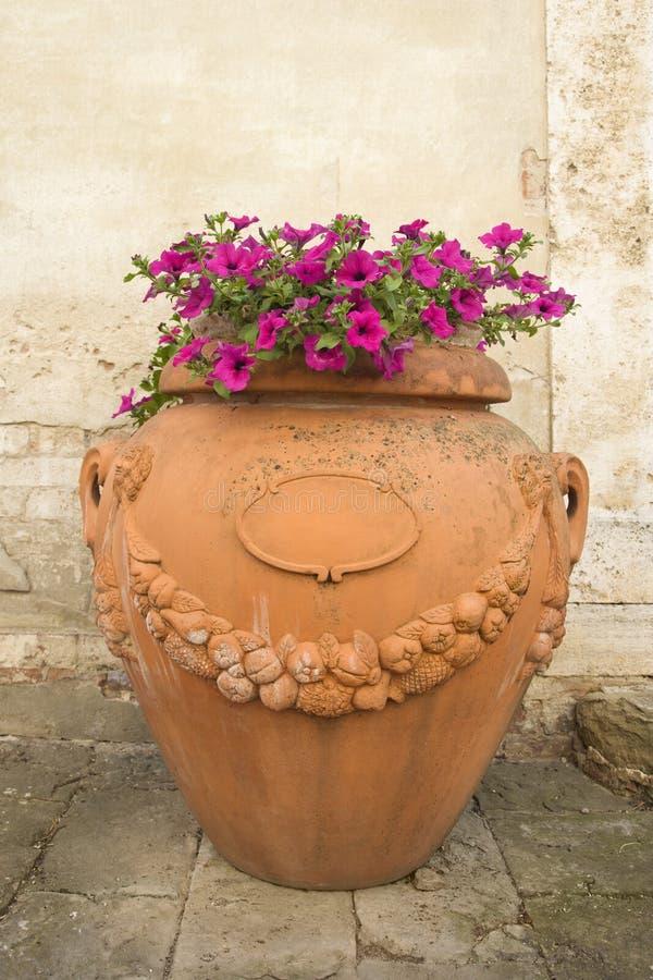 Potenciômetro de argila com as flores no passeio. fotografia de stock royalty free