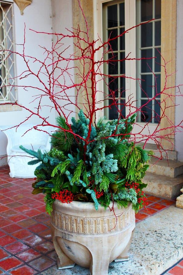 Potenciômetro de argila das hortaliças com bagas vermelhas e ramos vermelhos - decoração do Natal imagens de stock