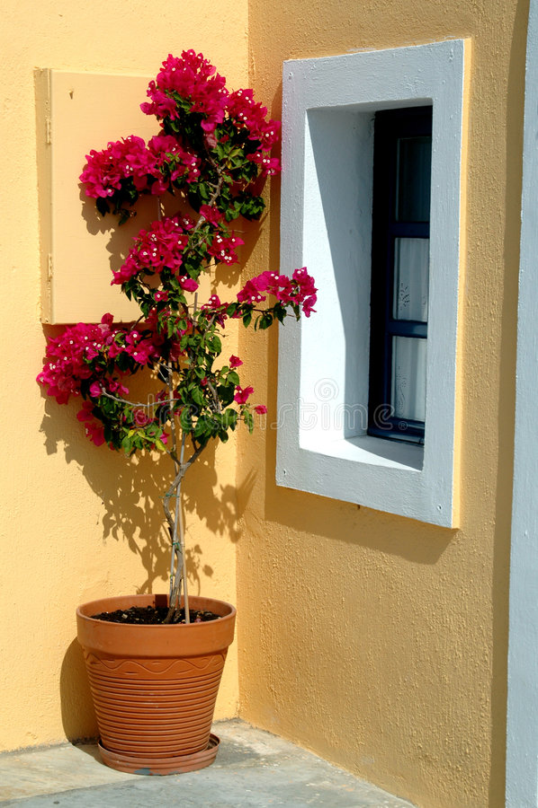 Potenciômetro de flor do console de Greece foto de stock